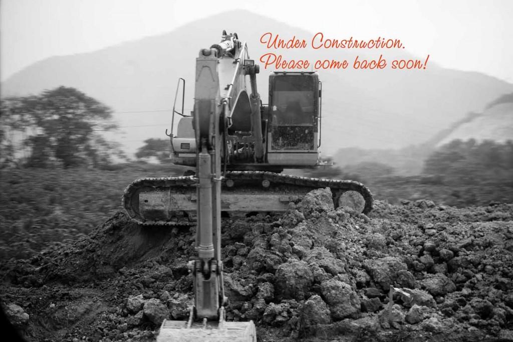 IMG_1124_Construction